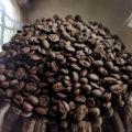 Race Ready Coffee Beans Closeup