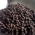 Weekend Warrior Blend Coffee Beans Closeup